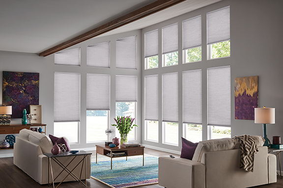 Comfortex window coverings